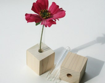 Bud Vases, Set of Two, DIY kit, test tubes and wood cubes ready for you to decorate.