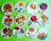 2 inch round Vintage Botanical Floral edible image wafer papers pretty up your cookies, cupcake toppers, fondant, cakes and chocolates
