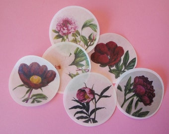 Edible Image Peony Flower Wafer Papers for your cookies, cupcake toppers, cakes and chocolates