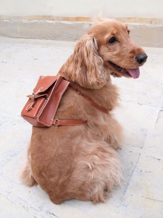 Personalized Leather Backpack for Dog Adorable, Hand Stitched by Harlex