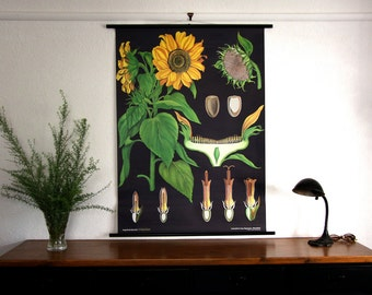 wall decor hanging chart amazign german paper canvas sunflower poster chart