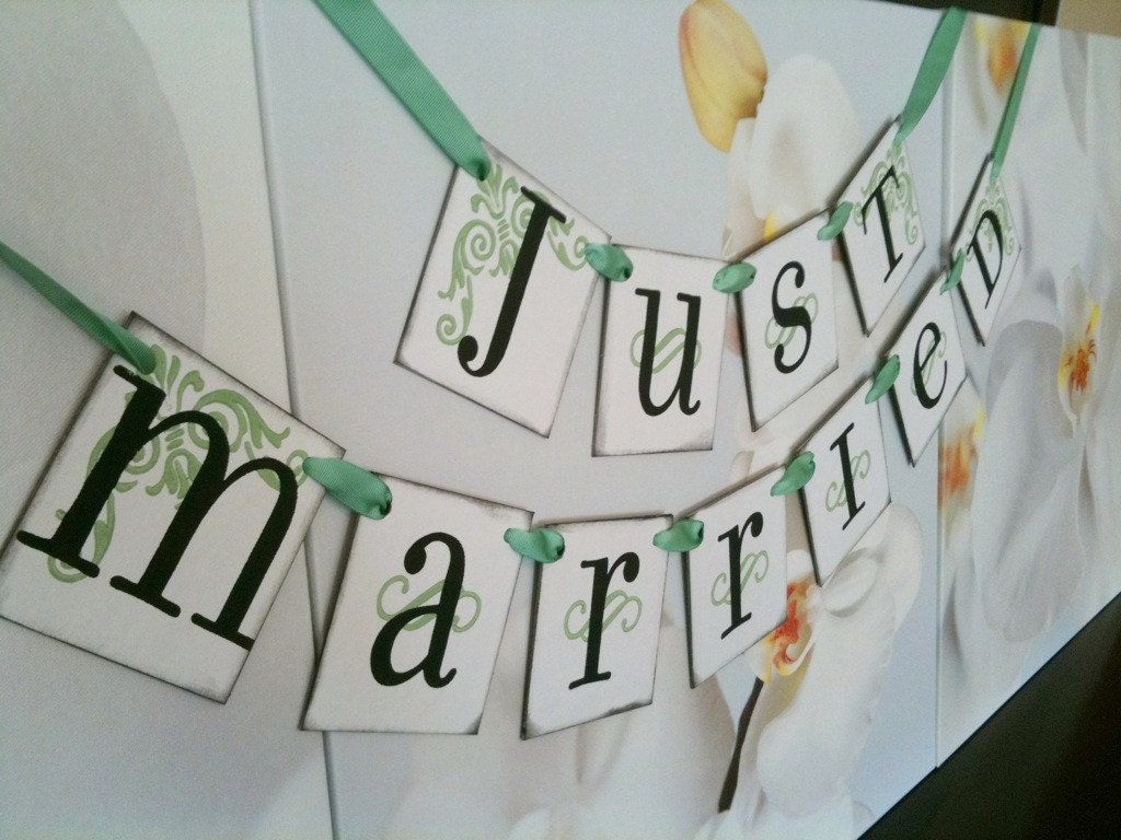 Just Married Banner/ Wedding Sign / Wedding Garland and