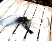Thundercloud-Feather Headband-OOAK-Black and White