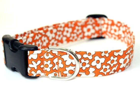 Dog Collar -  Fresh Marigold - Orange and Cream Dog Collar