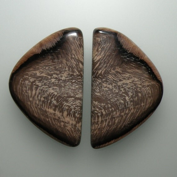 Petrified Hells Canyon Sequoia Herringbone Wood Hand Cut Matching Pair Cabochons from Oregon, free shipping