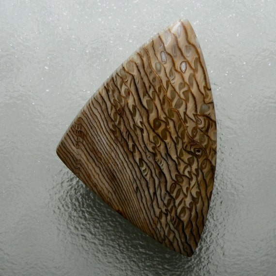 Petrified Hells Canyon Sequoia Herringbone Wood 100% Natural Hand Cut Cabochon from Oregon, free shipping