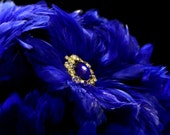 Sapphire Bouquet ... Royal Blue Feather Bouquet with Sapphire and Rhinestone Embellishments