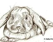 Small Custom Made Pet or Wildlife Portrait
