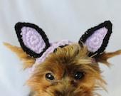 Knit Headband - Light Purple Cat or Rabbit Ears for Dogs