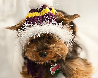 LSU or Vikings colored Hat for Dogs - Yellow and Purple