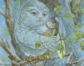 Luna Fairy and White Owl 5x7 Print