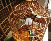 Aviary Bird Lamp or Chandelier
