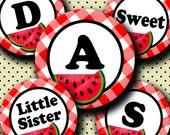 INSTANT DOWNLOAD Sweet Watermelon Alphabet (249) 4x6 Digital Collage Sheet Bottle Cap Images for bottlecaps  hair bows .. bottlecap images