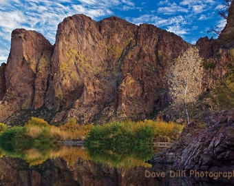 Arizona Photograph Salt River Reflections - Matted 13 x 19