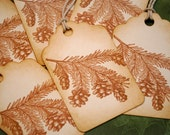 Pine Needles and Pine Cones Sepia Toned Vintage Inspired Holiday Tags Set of 6