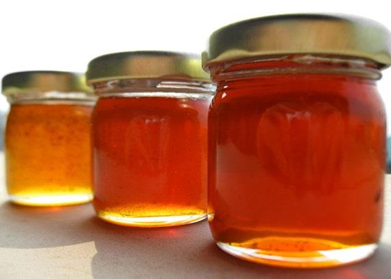 3 Honey Samples - Organic CInnamon, Organic Elderberry, Organic Vanilla Lavender