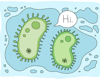 Paramecium Greeting Card, Science, Protozoa, Hi, Blank, 5x7, Blue and Green, Unusual, Weird Friendship Card