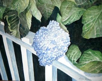 Gorgeous Hydrangea Original Watercolor Painting 9 X 12 Matted 12 X 16 Art