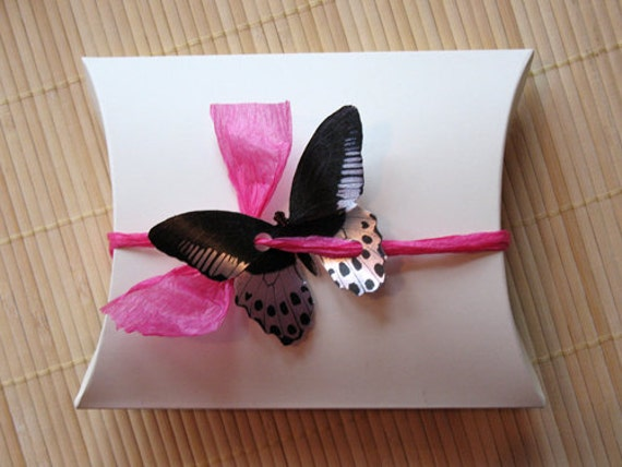 Wedding Gift Box Wrapping : Butterfly Gift Box: For wedding, gift wrap, birthday, baby shower ...
