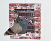 Pigeon Brooch with Wall Mountable  Box Frame