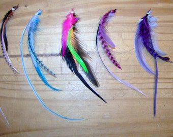 Dog Hair Feathers, Dog Feather Extensions, Pet Grooming, Pet Supplies, Pet Costumes, Dog Bows, Dog Hair Accessory, Dog Feathers