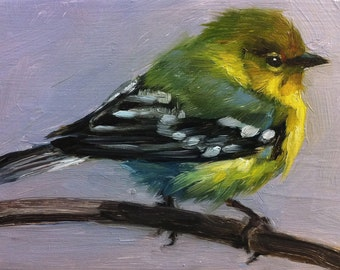 Tiny Pine Warbler - Little Bird Painting - Open Edition Print