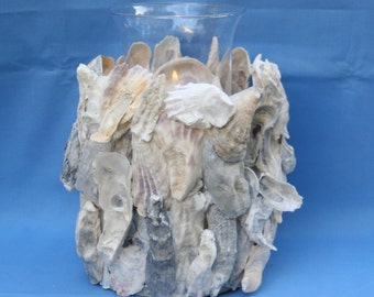 OYSTER SHELL CANDLE Holder - Tall