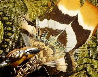 Golden oriole Brooch