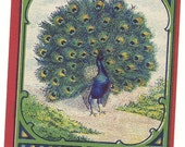 Peacock Vintage Lithograph Broom Label 1930's