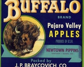 Buffalo Vintage Crate Label, 1930's