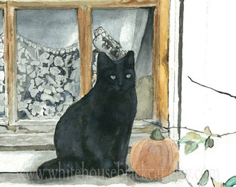 Black Cat on Windowsill, Lace Curtains, French Country Cottage, Fall Painting, Print of Watercolor Painting- Sophie and the Pumpkin
