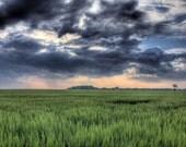 DelMarVa Drama (Crop A  -  Thunder roles across DelMarVa farm land  - 8x12 print)