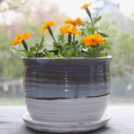 winter sunrise planter