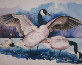 Note Card Canadian Geese