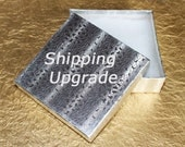 USA Shipping Upgrade for 19 USD
