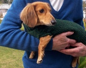 PDF Download Knit Pattern for Miniature Dachshund Dog Sweater