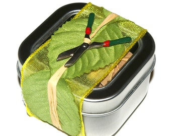Organic Seed Tape Tin- Italian Salad Mix, Fresh Salad, Container Gardening in Tin with Gardening Charm, Seed Strips, Seed Paper, Planting