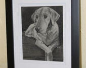 Custom Pet Portrait Charcoal Drawing of your Dog or Cat or Other Pet 8x10 matted made to order