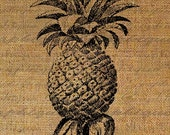 The Pineapple Fruit Words Tropical Digital Image Download Sheet Photo Transfer To Pillows Totes Tea Towels Burlap No. 1569
