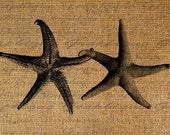 Star Fish Holding Hands Beach Ocean Seashore Digital Image Download Transfer To Pillows Tote Tea Towels Burlap No. 1728
