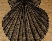 Burlap Digital Download Collage Sheet Beach Ocean Shell Clam Scrapbooking Fabric Transfer Pillows Tote Tea Towels 1731
