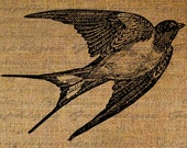 Swallow Flying In Flight Bird Birds Pretty Avian Digital Image Download Transfer To Pillows Tote Tea Towels Burlap No. 2907