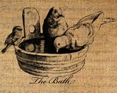 The BATH Text BIRDS Water Tub Bird Digital Collage Sheet Download Burlap Fabric Transfer Iron On Pillows Totes Tea Towels No. 4029