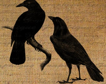 Two Black Crows Ravens Birds Crow Raven Digital Collage Sheet Fabric Transfer To Pillows Tote Tea Towels Burlap Digital Download 2183