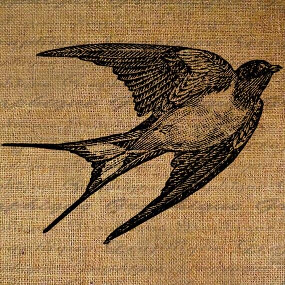 Swallow Flying In Flight Bird Birds Pretty Avian Digital Image Download Transfer To Pillows Tote Tea Towels Burlap No. 2907