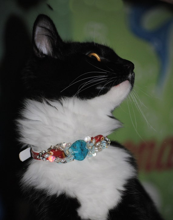 Small Personalized Turquoise pet collar costume custom bling cat pet collar Haute cat, kitty couture Turquoise