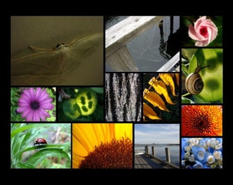 Any TWO 5 x 7 prints matted YOUR CHOICE