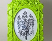 Ornate Roses Picture Frame - Key Lime Green