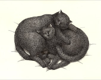 A4 Cat Print - Sleep together