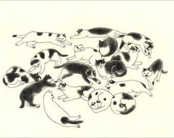 A4 Cat Print - Black and White cats